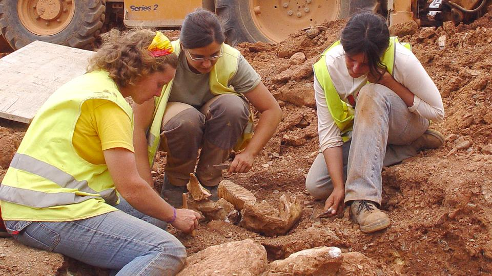 jaciment mamuts can tries viladecans paleontologia baix llonregat yacimiento