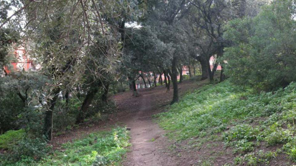 bosc can ginestar viladecans parc